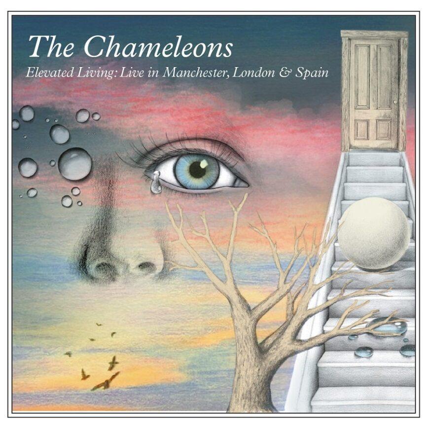 The Chameleons / <em>Live At The Gallery Club & The Haçienda, Manchester</em>